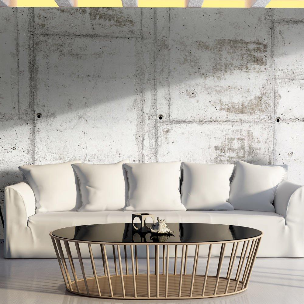 Murando - Vlies Fototapete 500x280 cm - - - Vlies Tapete - Moderne Wanddeko - Design Tapete - Beton Textur f-A-0458-a-a B01DDX8CLO Wandtattoos & Wandbilder a47116