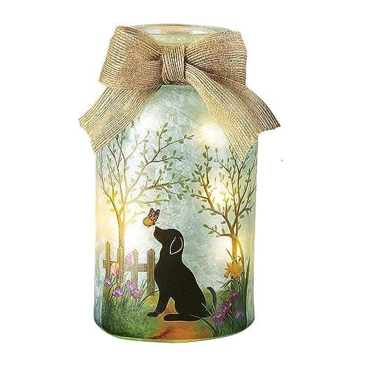 Amazon.com: Mascota de primavera tarro decorativo lámpara de ...