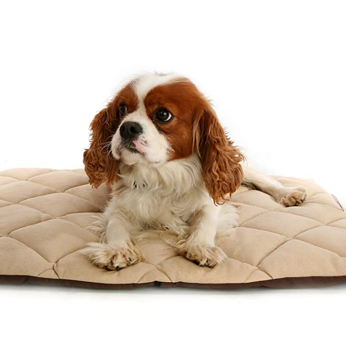 Petlife - Cama térmica Flectabed Q para mascotas: Amazon.es: Productos para mascotas