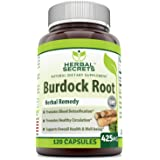 Herbal Secrets Burdock Root 425 Mg 120 Capsules-Promotes blood detoxification * promotes healthy circulation*