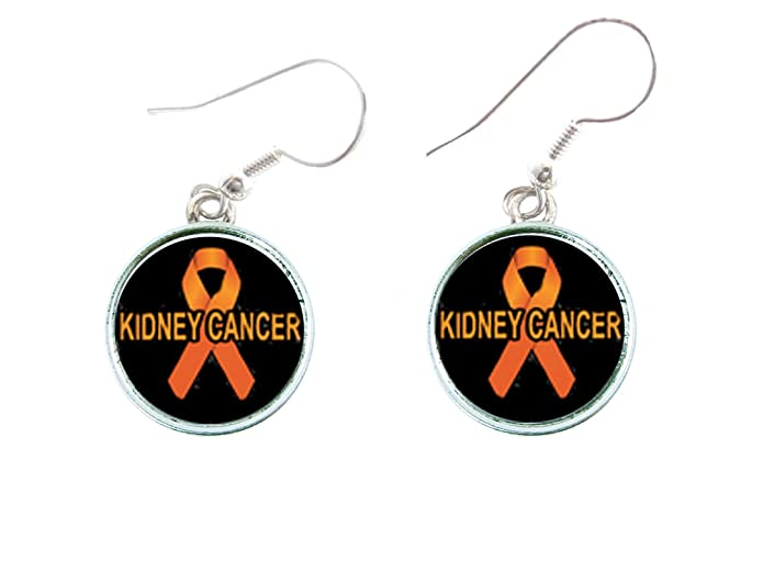 Amazon Kidney Cancer Awareness Orange Ribbon Silver Hook Wire
