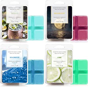 SnailDigit Winter Scented Wax Melts, 4 x 2.5 oz Wax Cubes, Natural Soy Wax for Home, Sea Breeze, Lime, Moonlight, Mojito