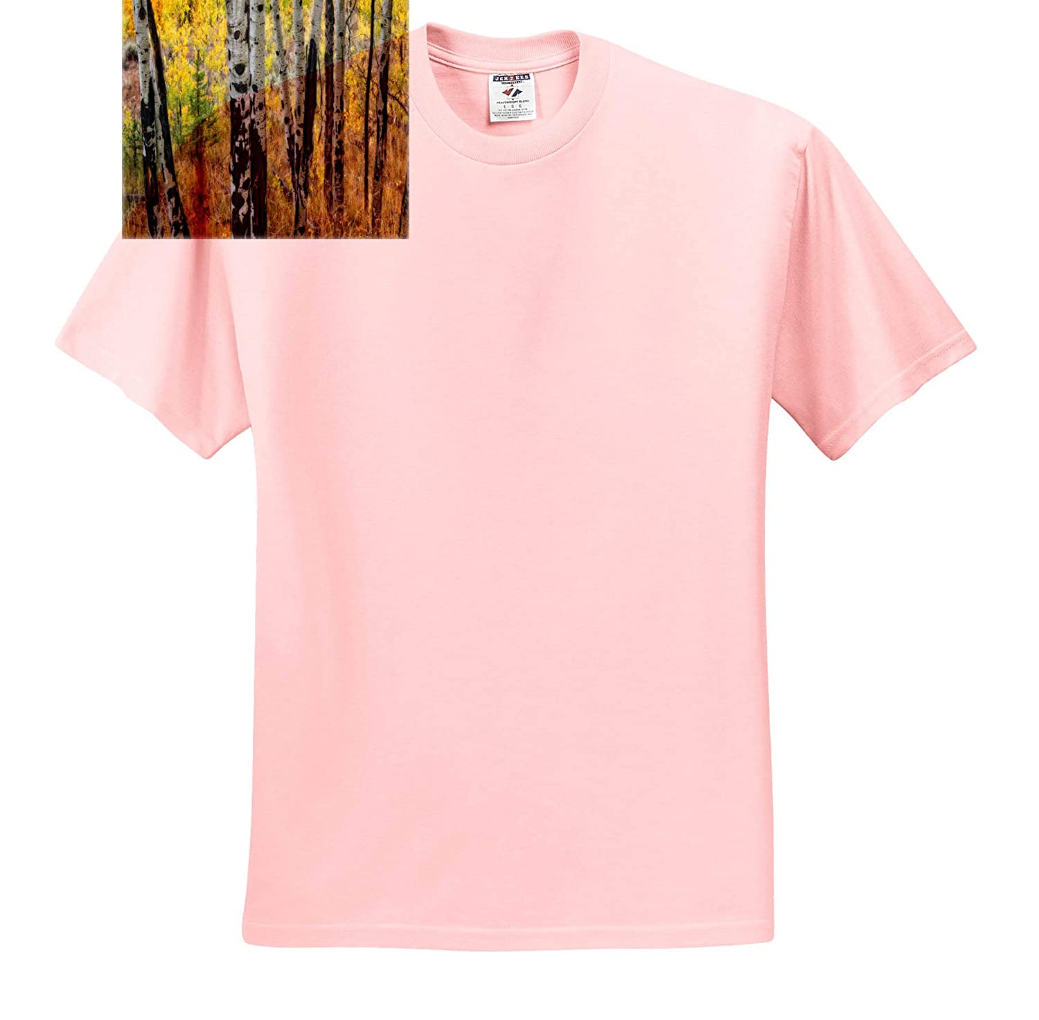 Landscape 3dRose Mike Swindle Photography Aspen Trees in Autumn T-Shirts