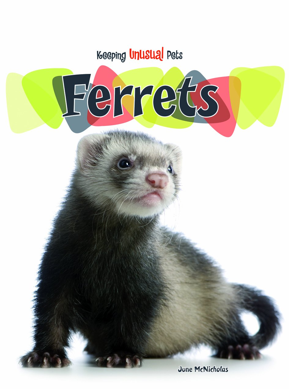 Ferrets (Keeping Unusual Pets) by Brand: Heinemann (Image #1)