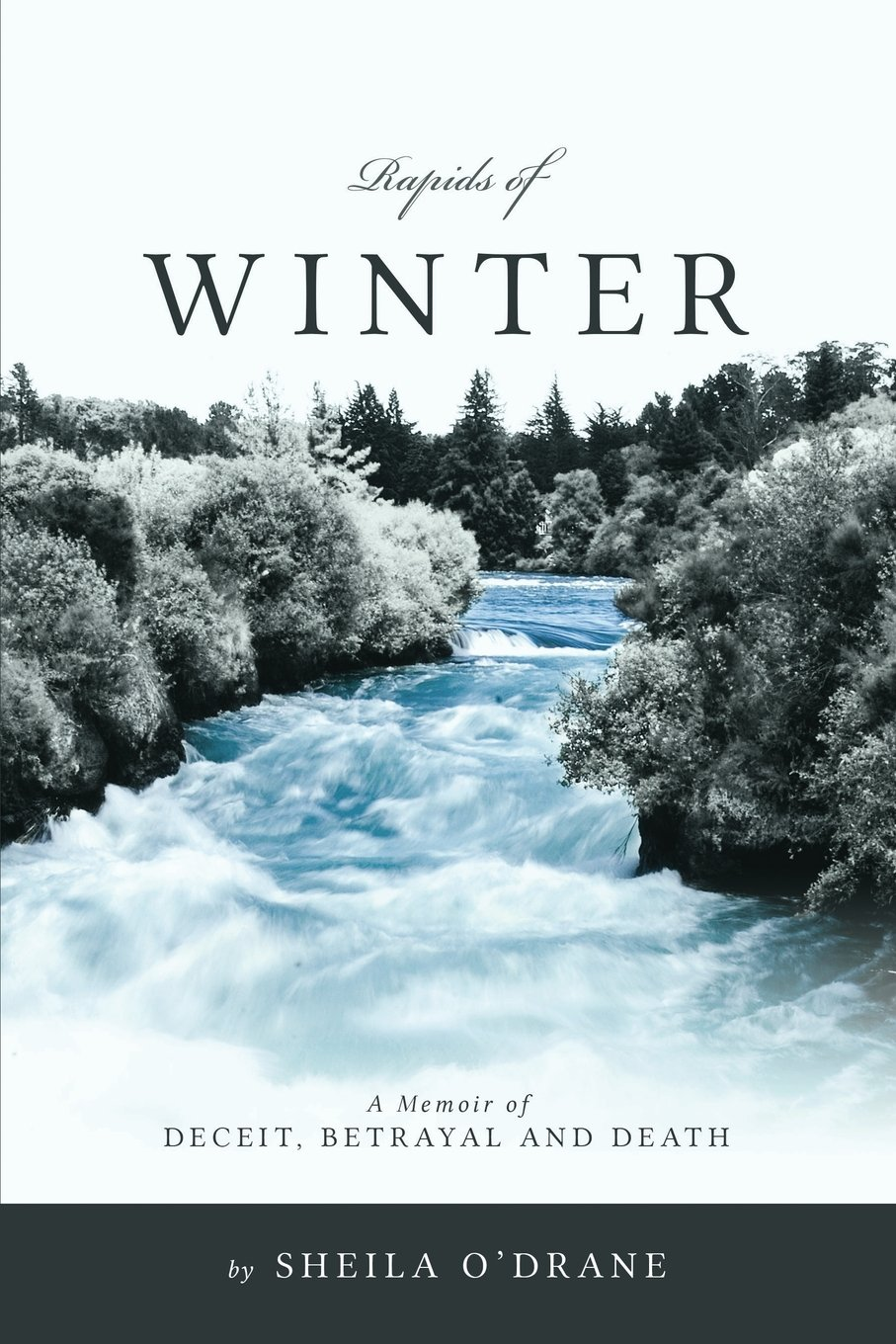 Read Online Rapids Of Winter: A Memoir of Deceit, Betrayal and Death ebook