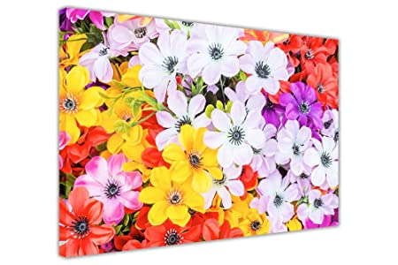 Canvas It Up CANVAS WALL ART PRINTS YELLOW PURPLE RED PINK FLOWERS ...