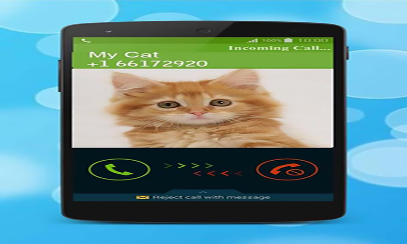 Amazon Com Fake From Cat Prank Ing Prank From Pet Appstore For Android