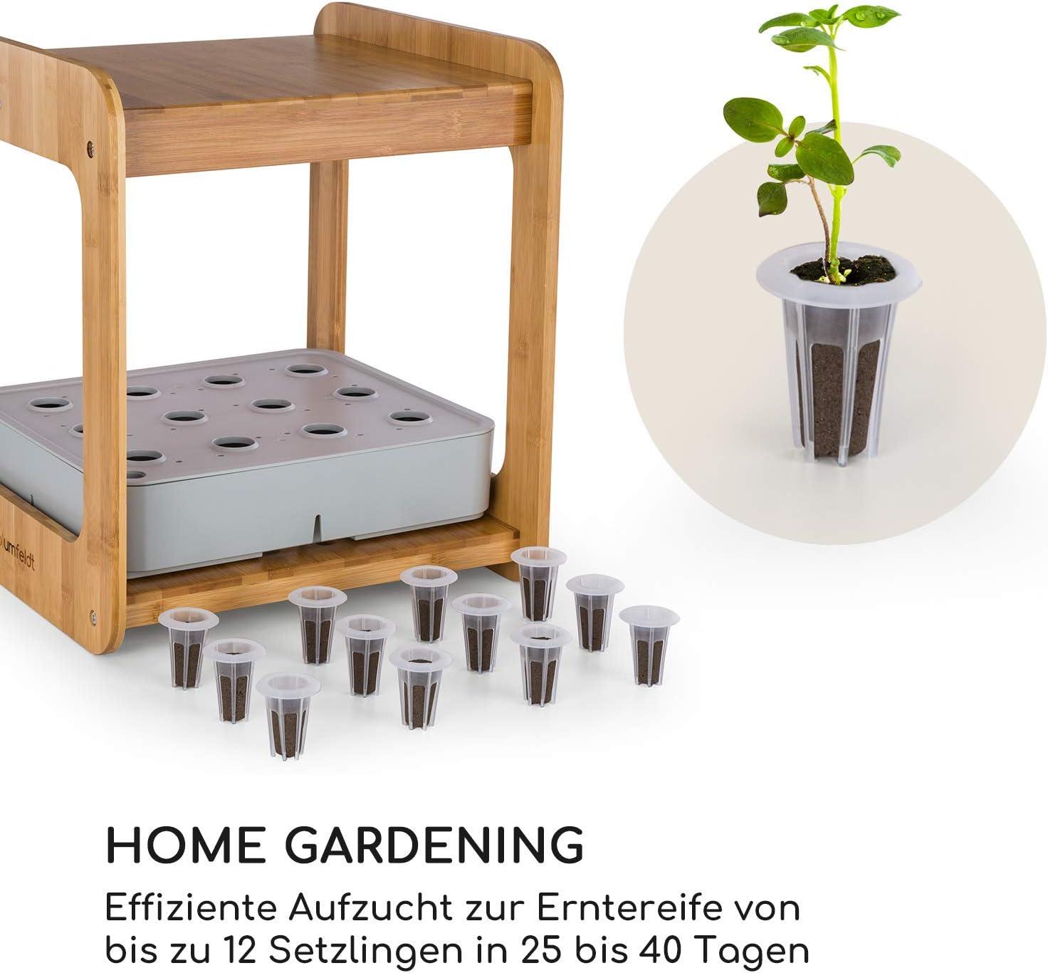blumfeldt Urban Bamboo Refresh Kit Hydroponisches Pflanzsystem,Zubeh/ör-Set 12 x Pflanzkorb /& 12 x Pflanzschwamm