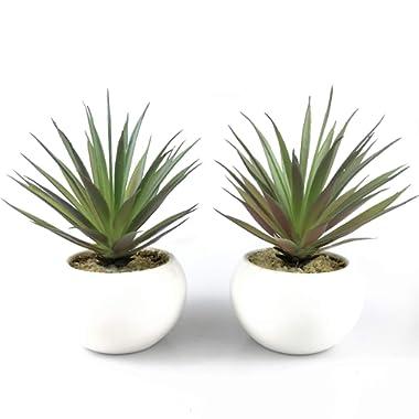 Tuokor Small Artificial Plants in Ceramic Pots, Faux Greenery 2 pcs Set 3.5  x 6.7 (D x H)