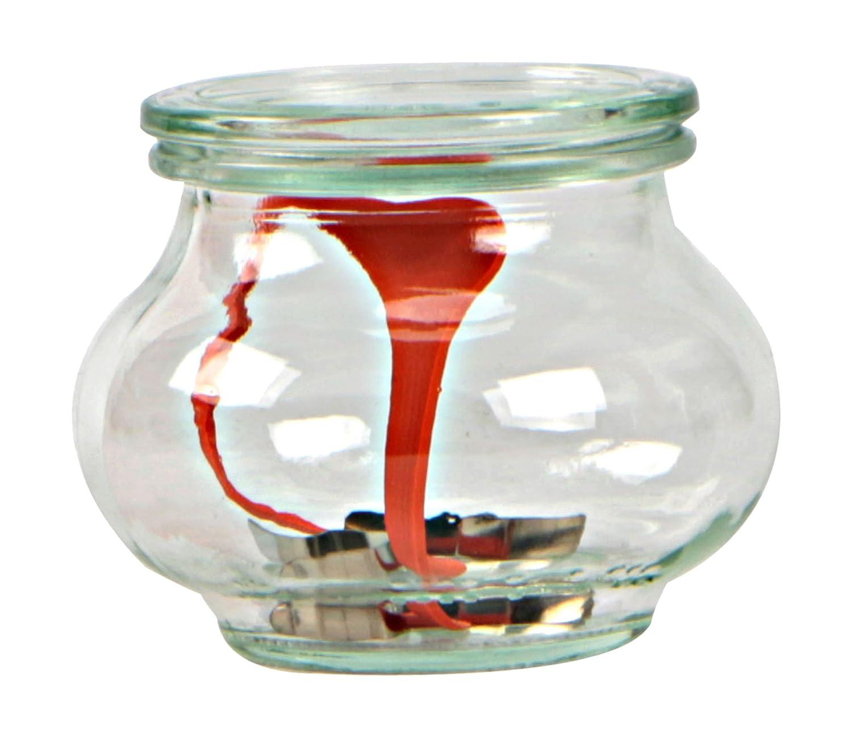 Weck Vasetto Decò 220 ml con Coperchio da 60 mm, Completi di Guarnizione e Clips, Scatola da 12 Pezzi, Vetro, Trasparente 3286700 barattoli; coperchi