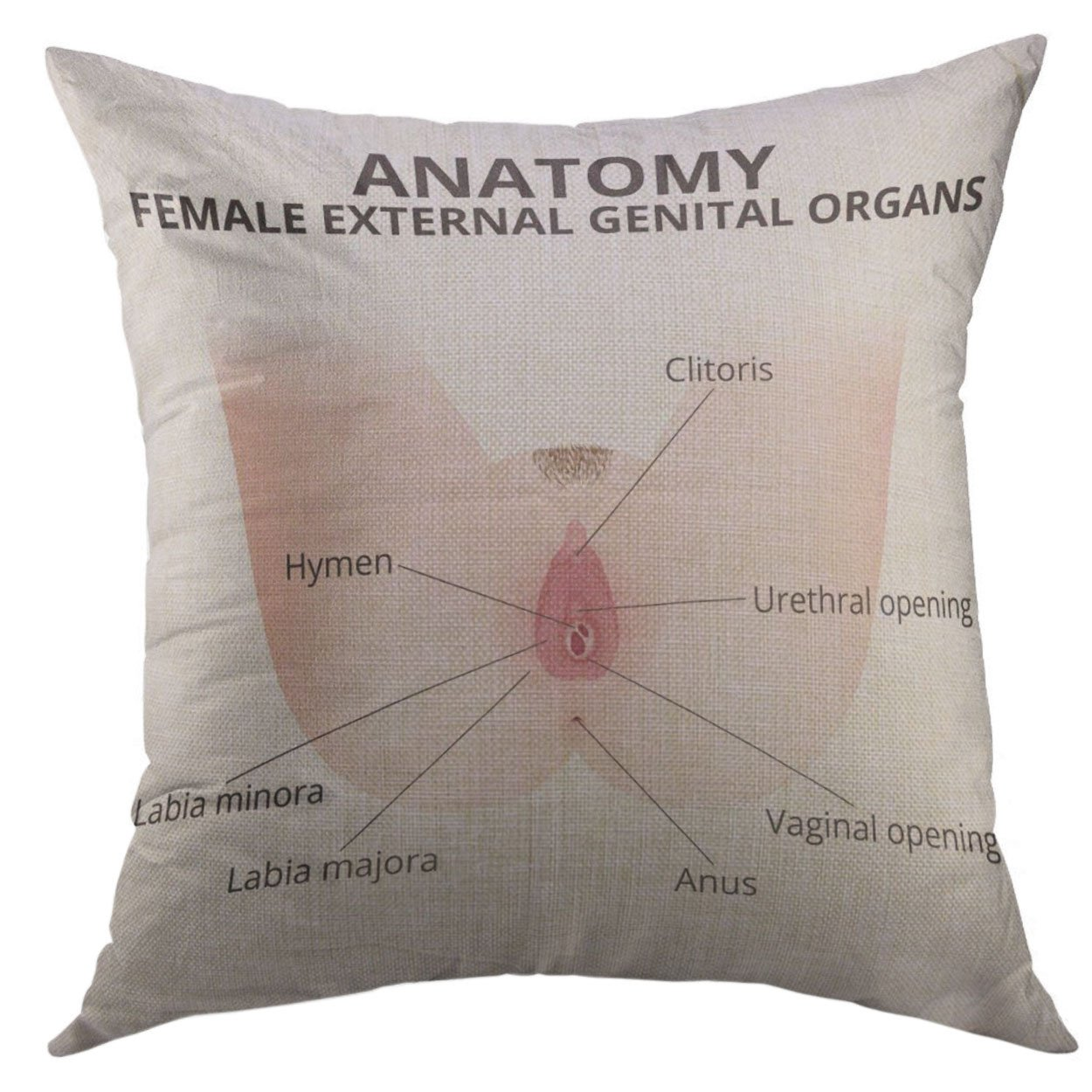 Amazon Mugod Pillow Case Hymen The Structure Of Female External