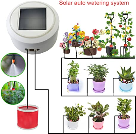 Amazon.com: Solar sistema de riego automático/dispositivo ...