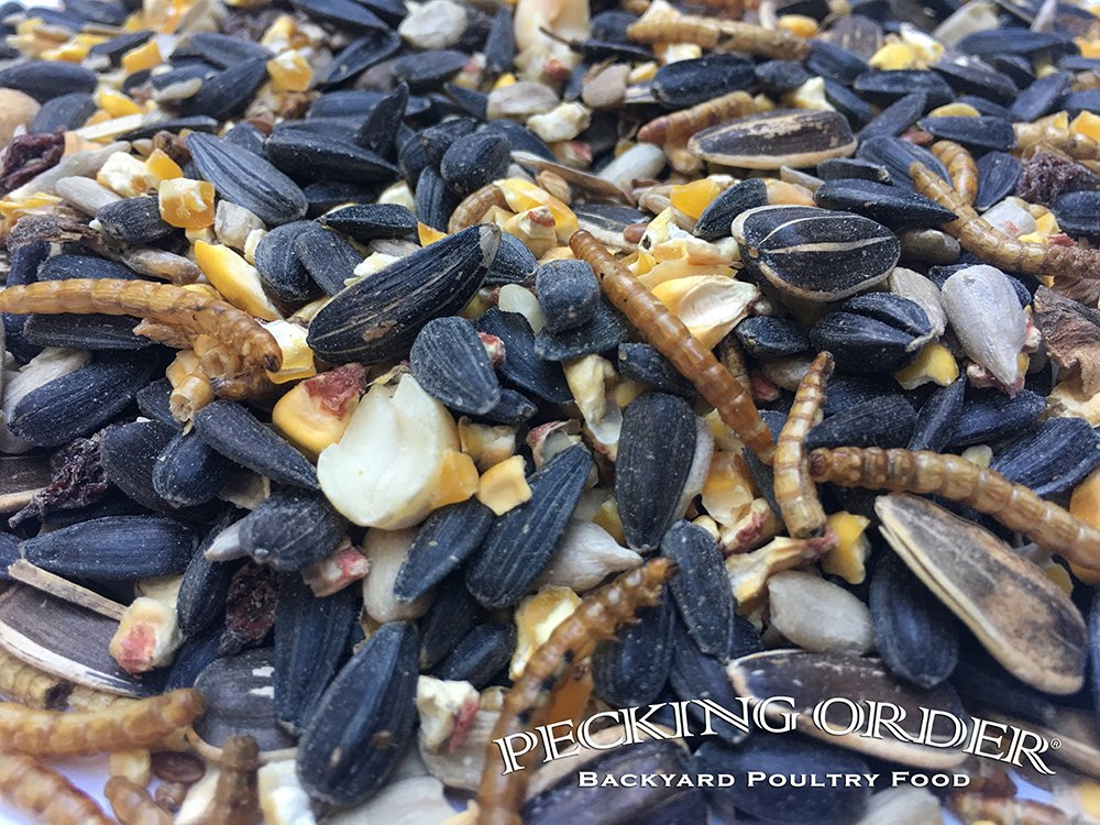 Pecking Order Mealworm & Sunflower Treat, 8 lb by Pecking Order (Image #3)