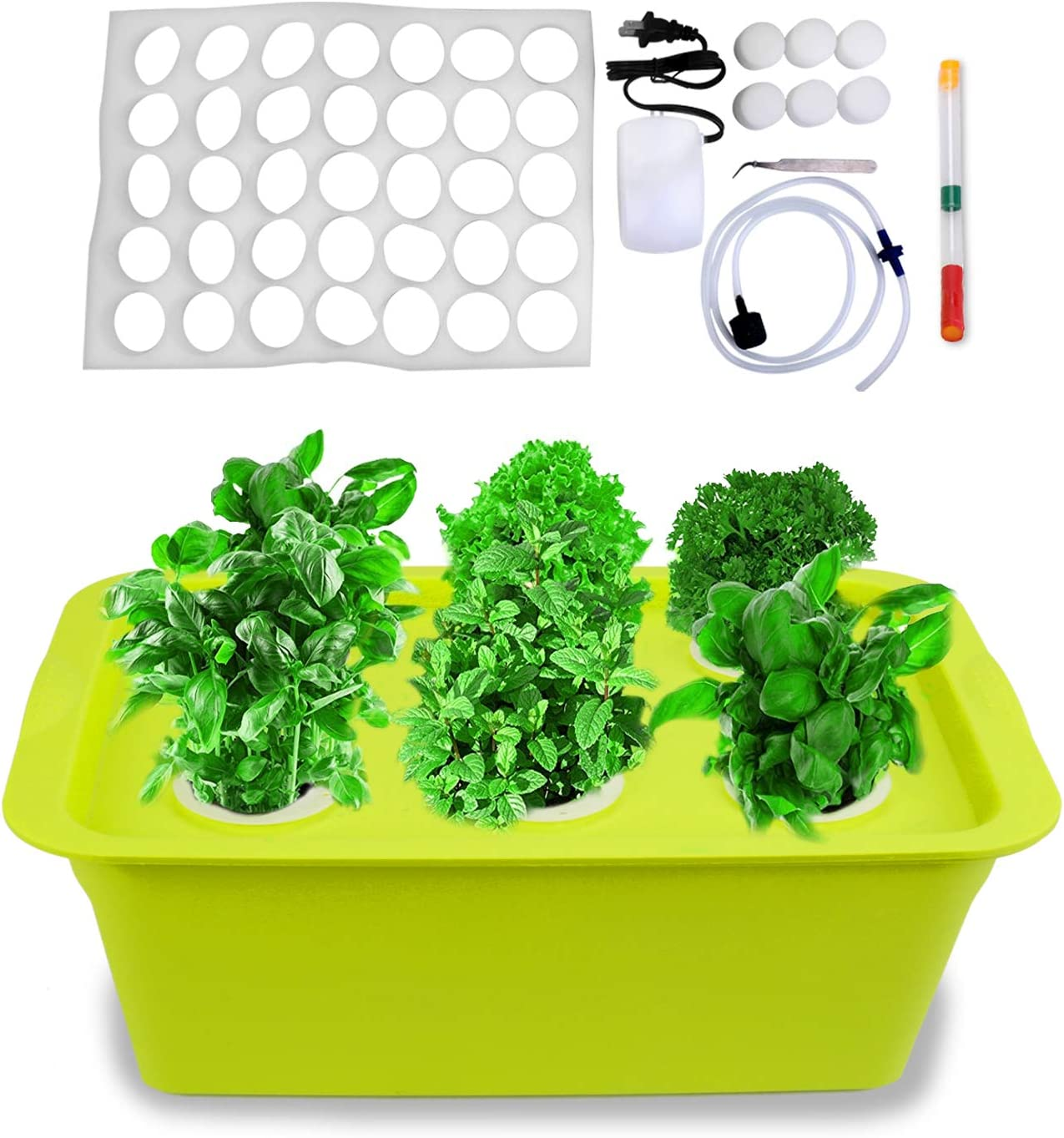 Freehawk Hydroponic System Growing Kit with Air Pump 6 Holes Soilless Cultivation Seeding Plant Grow Box Garden Cabinet Box for Herbs, Seeds, Lettuce, Vegetables
