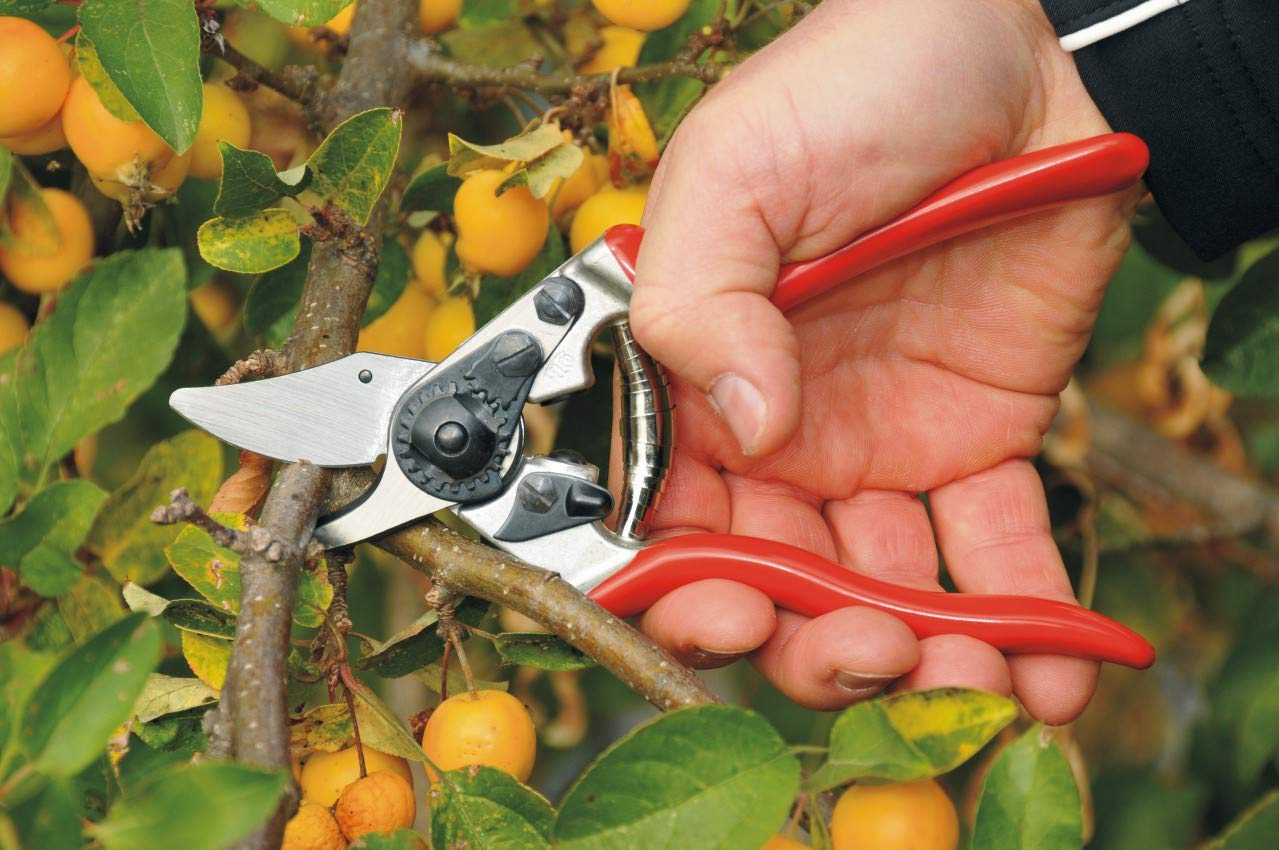 Felco F-6 Classic Pruner For Smaller Hands - 100052385 by FELCO