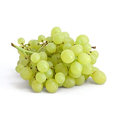 White Grape Vines - Seedless Grapes 2 yr Old Healthy Bare Root Wine Jam-3 Pack from Grandiosy Farm : Garden & Outdoor