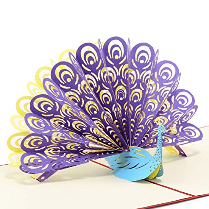 amazon com paper spiritz peacock pop up birthday card for wife