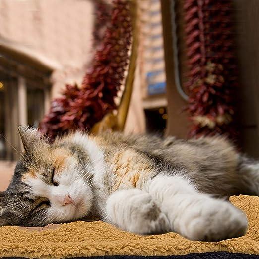 VSTON Manta de la Cama para Mascotas Alfombrilla para Perros Gatos Funda de cojín Lavable Más cálido Perros Suaves Cojín Colchón Acolchado, Mediano 50x60CM: Amazon.es: Productos para mascotas