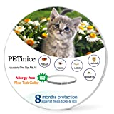 Flea and Tick Prevention for Cats,Flea Control