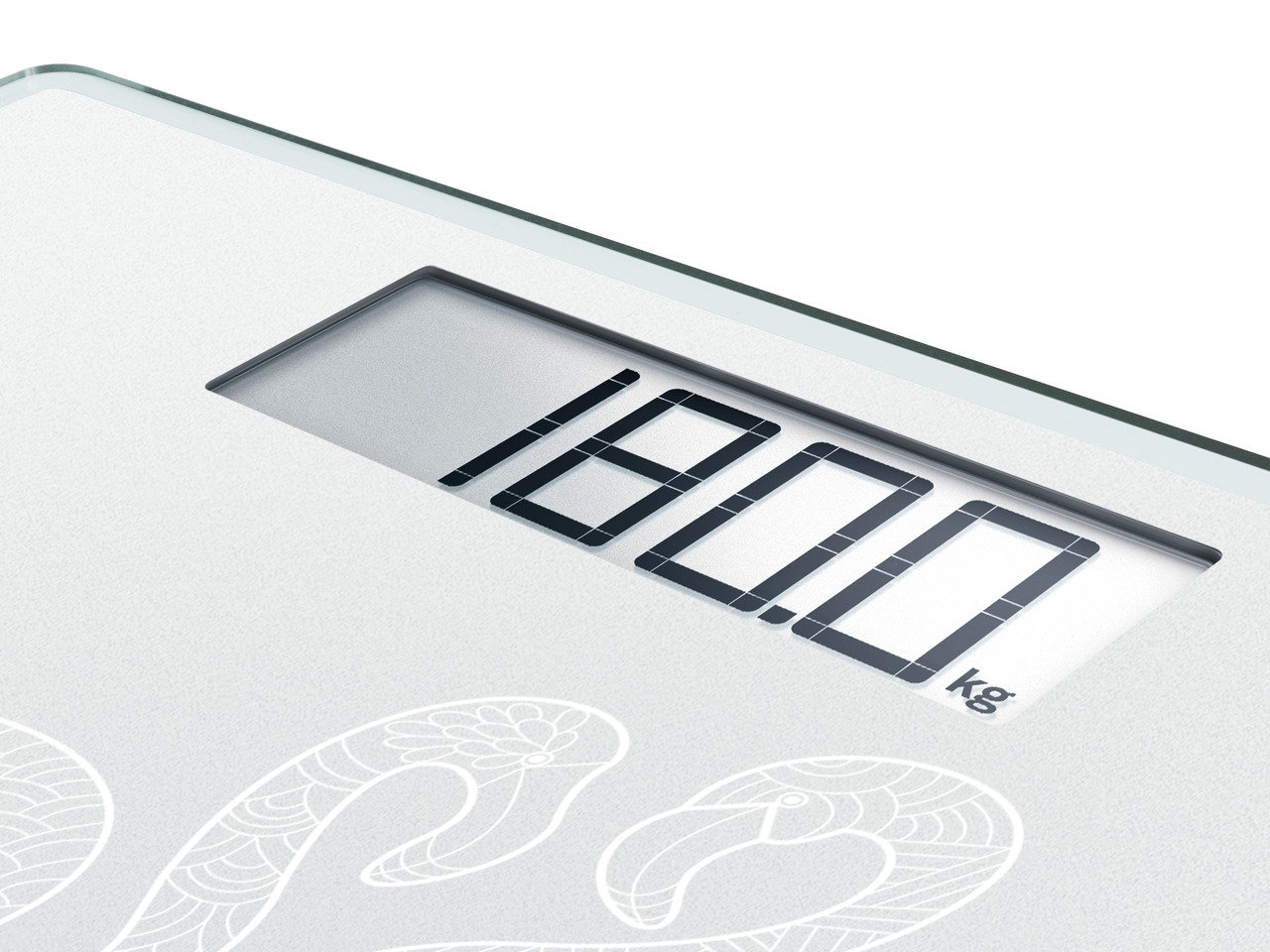 Leifheit Soehnle 63875/Digital Personal Scales Style Sense Comfort 100/Frosted and Frozen
