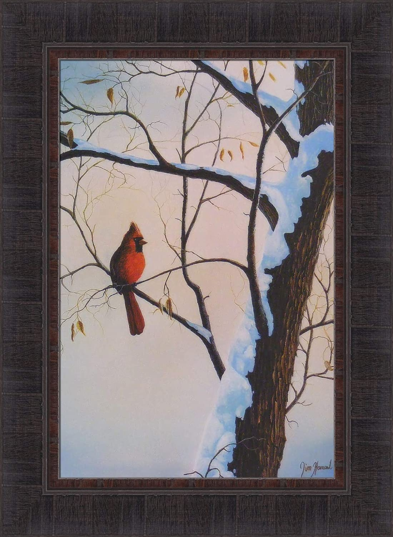 Winter Colors By Jim Hansel 17x23 Cardinal Snow Bird Framed Art Print Wall Décor Picture Cardinal Bird Decor Posters Prints Amazon Com