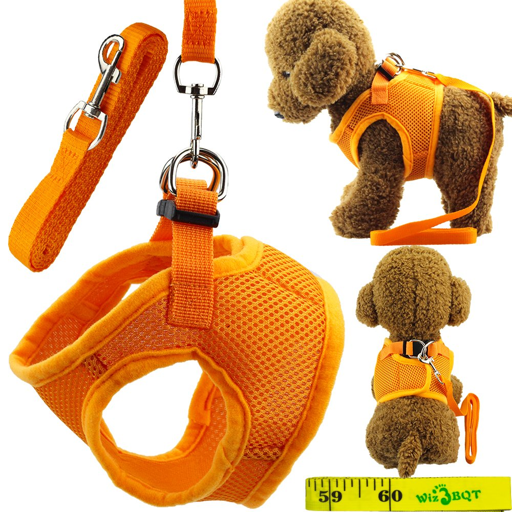 Soft Adjustable Mesh Dog Puppy Cat Pet Vest Harness and Leash Set for Dogs Cats Pets (A, Orange)