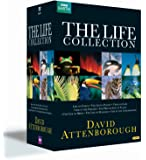 Attenborough - The Life Collection Box Set (repack) [Import anglais]