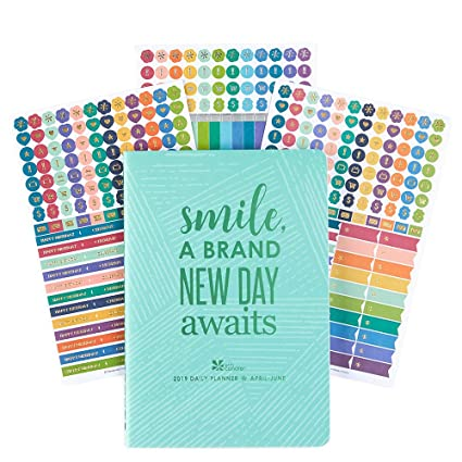 Erin Condren PetitePlanner- Daily Planner/Agenda Volume 2: April - June 2019 W/Do it All Sticker Pack
