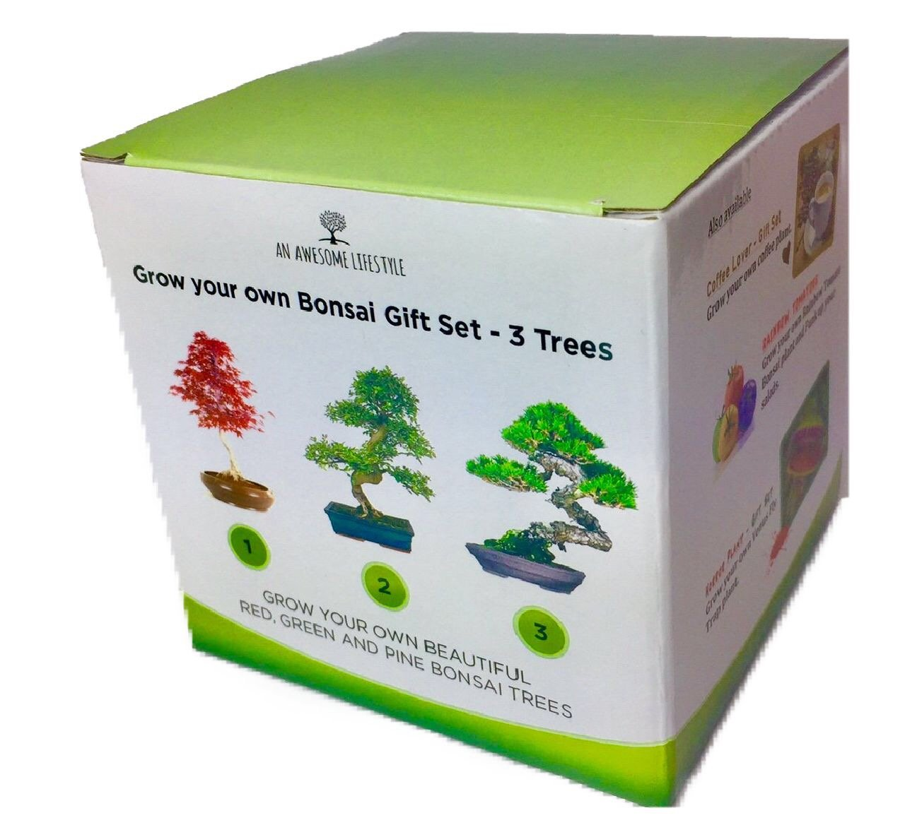 BONSAI TREE - GROW YOUR OWN 3 TREES GIFT SET - Grow Your Own 3 Bonsai Tree. Grows One Red Maple Bonsai, One Pine and One Sweet Gum Bonsai tree seeds. Full bonsai tree kit indoors or out, Zen Garden. Includes everything you need, from biodegradable growing
