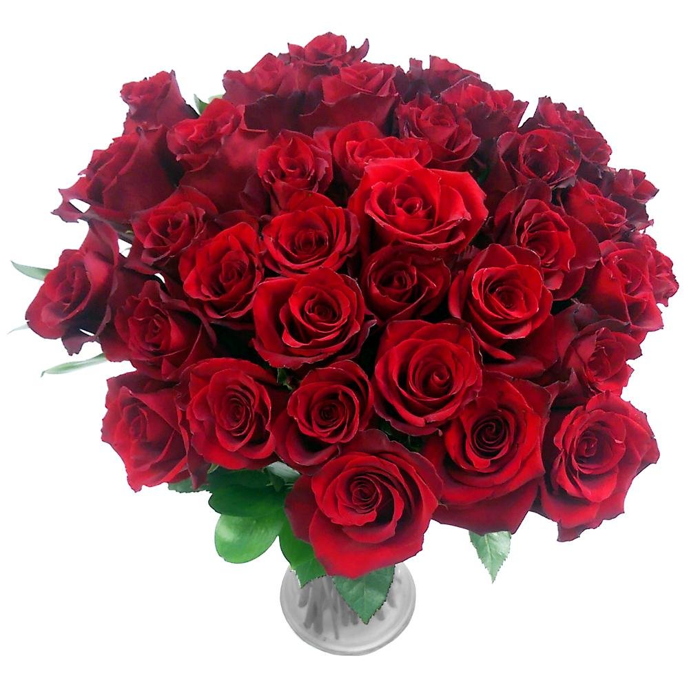 Clare Florist Obsession 36 Red Rose Flower Bouquet Fresh Roses Perfect for Valentine's Day, Birthdays, and Anniversaries ClareFlorist