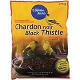 Black Thistle Seeds