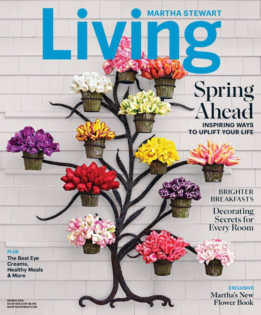 Martha Stewart Living Print Magazine