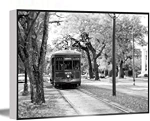 ARTWORKS FOR KITCHEN,living decor,New Orleans Photography,Black and White Print,St Charles Streetcar Garden District,Travel Decor,New Orleans Wall Art,16''x24'' Framed Modern Canvas Wall Art,