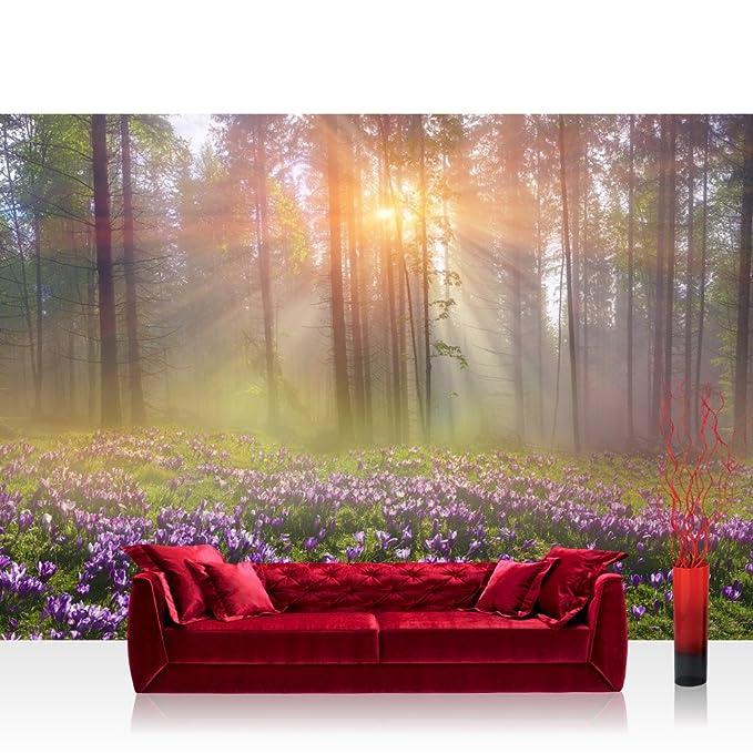 1 opinioni per Liwwing FTVLPP-0239-350x245- Vello foto parati 350x245 cm- top! premium plus