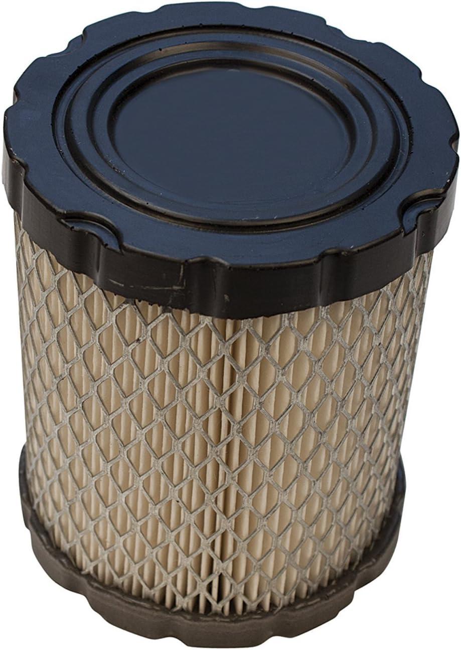 Raisman Air Filter Compatible with Briggs 794935/798897