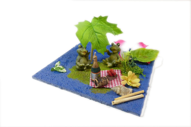 Geldgeschenk Frosch Picknick Am Teich Urlaub Hochzeit
