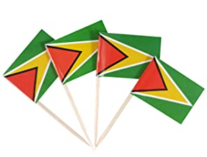 JBCD Guyana Flag Toothpicks Guyanais Flags 100 Pcs Cupcake Toppers Flag Tooth picks Small Mini Stick paper flags Picks Party Celebration Cocktail Food Bar Cake Flags