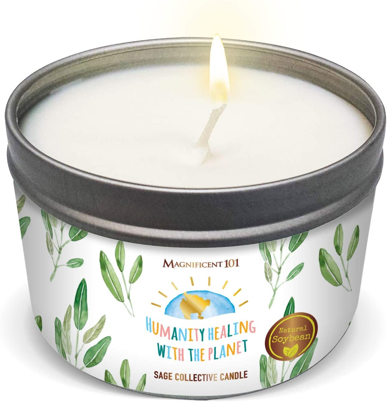 Protection 100/% Soy Wax Ritual Candle Spell Pot Scented Candle