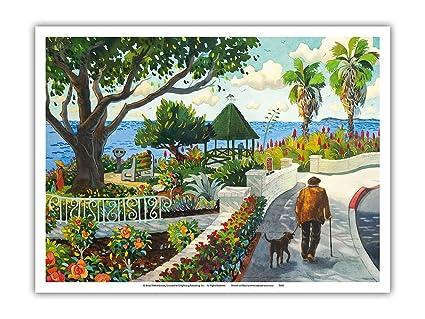 Amazon Com Pacifica Island Art Walking By Las Brisas