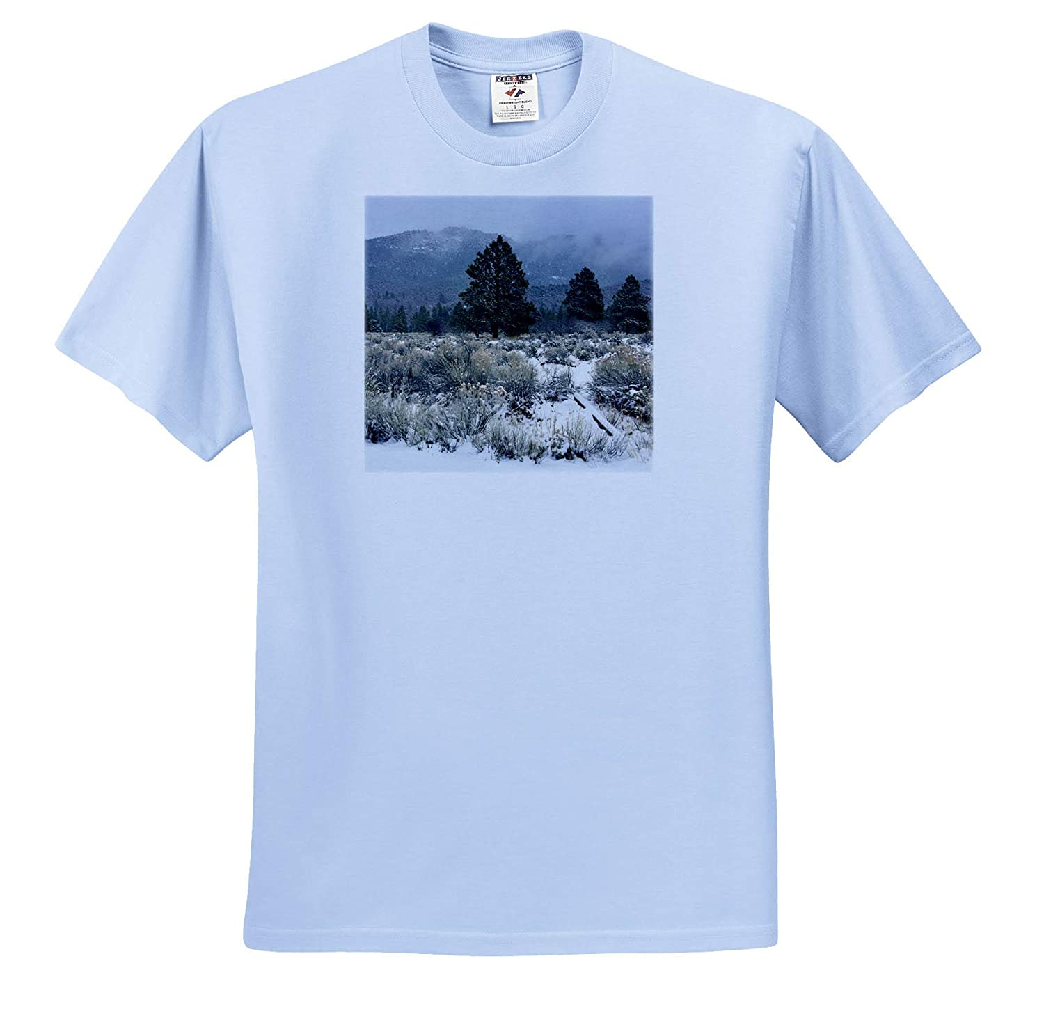 Pine Valley Dusted with Snow 3dRose Jos Fauxtographee A Misty and Snowy say in Pine Valley Utah with Trees T-Shirts