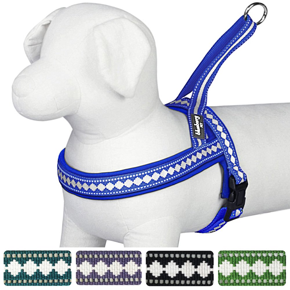 Blueberry Pet Soft & Comfortable No Pull Jacquard Neoprene Padded Dog Harness, 5 Colors, Matching Collar & Leash Available Separately