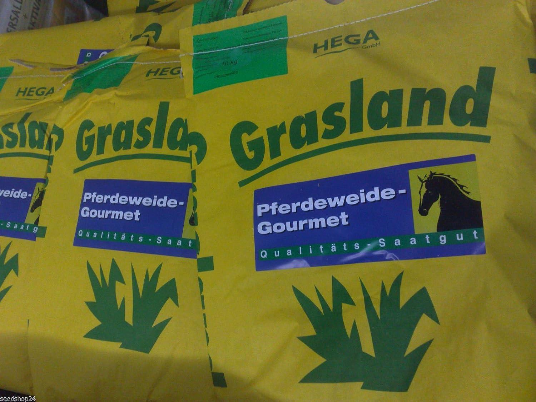 Weide Grasland Pferdeweide ohne Kräuter 30kg