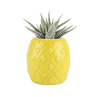 TrueZoo Planter, 1 EA, Yellow: Home & Kitchen