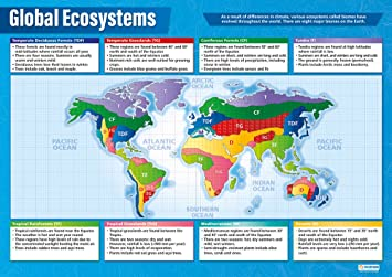 Global ecosystems poster geography poster for ks3 gcse students global ecosystems poster geography poster for ks3 gcse students 9 1 gcse gumiabroncs Image collections