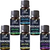 ArtNaturals Aromathérapie Top-6 huiles essentielles - (6 x 10 ml) - Pure de la menthe poivrée de la plus haute qualité, arbre de T, romarin, lavande, eucalyptus et encens thérapeutique