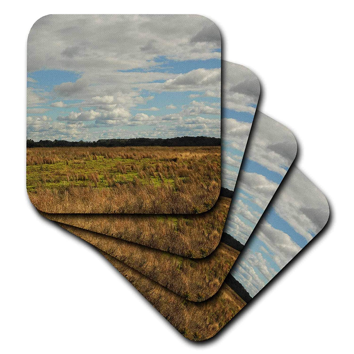 3dRose Stamp City - nature - Photograph of an open field in South Carolina on a cloudy day. - set of 8 Ceramic Tile Coasters (cst_302844_4)