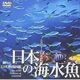シンフォレストDVD 日本の海水魚 DVD映像図鑑
