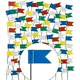 Lot de 100drapeaux de marquage au pays des broches XXL Pack–COXT743060de Drapeaux en 5couleurs pour tableau de cartes & cartes du monde