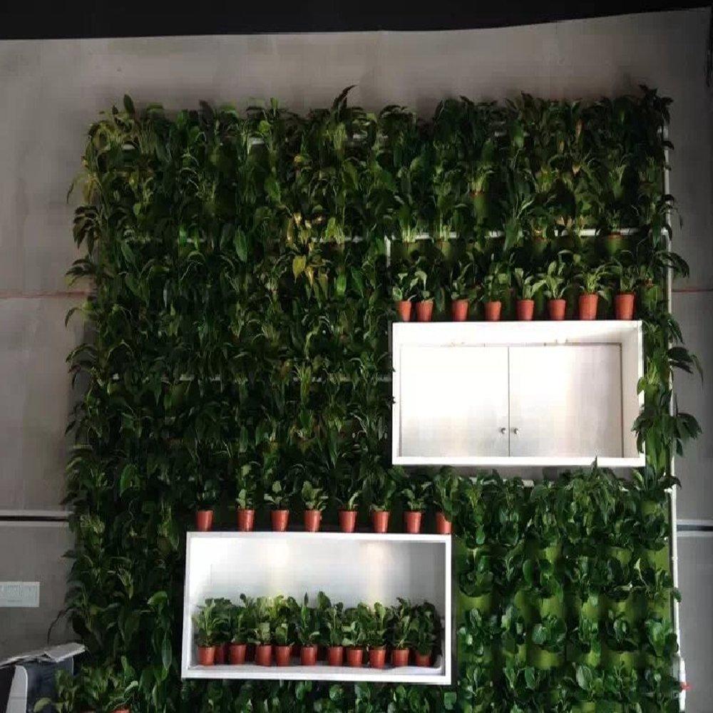 Amazon.com: Vertical Garden Planter, Glovion Wall Pocket Planter Grow Bag  For Indoor U0026 Outdoor Use  9 Pockets: Garden U0026 Outdoor