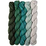 Knit Picks Stroll Mini Pack 美利奴袜子纱线 Spring Fields 44542